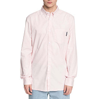 DC CLASSIC OXFORD  M WVTP ENGLISH ROSE