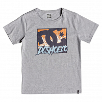 DC WINDOW DOWN SS  B TEES GREY HEATHER