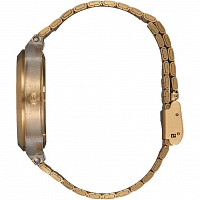 Nixon Time Teller Acetate Light Gold/Clear