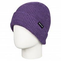 DC HAZY BEANIE  HDWR GRAPE