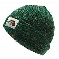 The North Face SALTY DOG BEANIE NGREEN/BRITKH (EN5)
