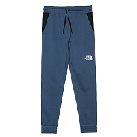 The North Face M STANDARD PANT BLUE WING TEAL (N4L)