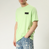 Levi's® SKATE GRAPHIC SS TEE LSC PARADISE GREE
